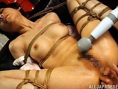 Weird tastes are as hot as any other. Some bitches, like slutty Erina, enjoy being tied up in a rope bondage. See her with legs widely spread and exposing her horny hairy cunt in all its splendor in front of the camera. The brunette Japanese bitch clearly cherishes those moments, when aroused with vibrators.