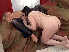 This mature lesbians would love to play with their sex toys to masturbate their pussies. They get it licked and fingered hardcore in a hot orgasm.