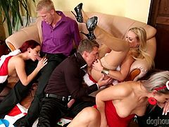 Lustful housewives arrange dirty group sex orgy under Christmas tree