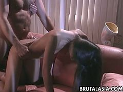 Oversexed chicks Daisy Marie and Mika Tan having dirty 3some fun