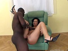 This horny brunette hottie loves to take a big black cock in her mouth for a suck in a blowjob and gets her shaved pussy nailed hardcore.