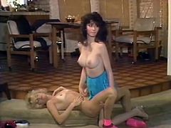 Bosomy pretty brunette and blonde lesbians are busy with licking pussies