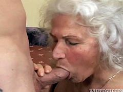Grey haired grannie enjoys sucking big fresh cock while her husband is out