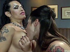 Horny babe in red fishnet pantyhose is having fun with her tranny lover. Foxxy, the shemale, loves the way Freya sucks her tranny tits. These two tittied whores are getting naked, to start some fantastic fuck fun. After playing with the boobs, Ferya bends and sucks Foxxy's hard cock, to play more!