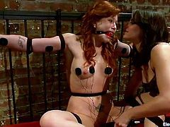 Brooklyn Lee with ball gag in her mouth hole gets her pussy punished