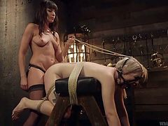 Brunette Dana, wearing stockings and strap on, is nailing her slave, Ella, hard and deep. The slut is tied with ropes and ball gagged. Dana shoves a metal toy in her ass and fucks her with the strap cock from behind. After rounds of pounding, brutal mistress stops to try something kinkier.