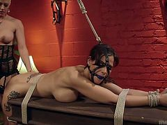 Big tit blonde lady is dominating over her brunette, with jiggly ass and bouncy titties. Mistress wears a sexy lingerie and whips, slaps the tied and ball gagged slut's ass. Then, she puts on a strap-on cock and fucks the bound whore from behind. As the toy-cock digs deep in her ass, she groans with pleasure.
