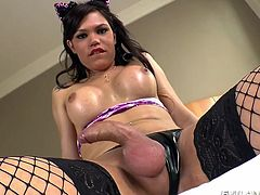 Sexy brunette shemale is wearing a latex panty with fishnet stockings and she comes forward, to display a superb solo play. She bares her nice big tits and takes out her dick to play. Ladyboy begins to jerk cock with her legs spread & it starts getting bigger and bigger with her moaning.