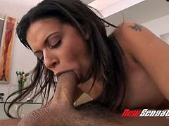 Wild bootylicious brunette cowgirl Alexis Silver gives deepthroat blowjob