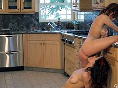 April ONeil and another sexy babe with big natural boobs strip nude and have lesbian sex in the kitchen. They eat each others pussy out with big enthusiasm. Watch busty lezzies have fun!