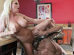 Diamond Foxxx with massive knockers warms Carlo Carerra up and takes his pole in her butthole