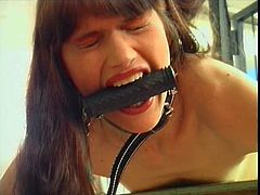 BDSM orgies attract the dirtiest and most open minded people