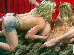 Naked hot boded women Adrianna Nicole and Kelly Wells have crazy lesbian sex and then curious Stormy Daniels joins the fun with several more dildos for juicy blondes to share.