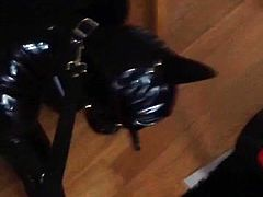My Rubber Chastity doggy sucking my strap-on