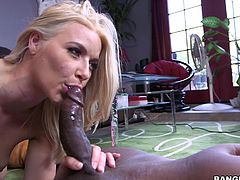 hot anikka blowing a black guy