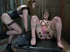 lovely bitch abella gets tied up