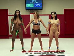 The wrestling match between two hot lesbians ends with the victory of a tough ebony bitch. See the naked brunette sucking the kinky strap on, which naughty Lisa is wearing. The rule says, that Lea must obey and spread her legs in favor of the winner, who gets to fuck her lovely cunt badly...