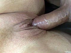 Chubby blonde milf Alura, gets her wet pussy fucked by the gorgeous Venus. The hot tranny uses her thick cock, to make this fat slut orgasm. The chubby milf gets cock slapped by the beautiful ladyboy penis.