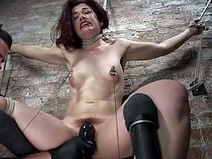 A naked helpless slut has been fiercely tied up by the wall. Click to watch Ingrid's cunt aroused by a horny man with a kinky vibrator. Dare to enjoy the spicy details of these bdsm juicy scenes. Watch the bitch tied up differently and wearing a ball gag...