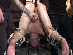 Merciless tattooed guys intend to apply a brutal treatment to slutty Casey. The naked stud has been strongly bonded with inescapable ropes. Click to see one of the executors stuffing a big dildo in his ass, while the other plays with his cock lasciviously...
