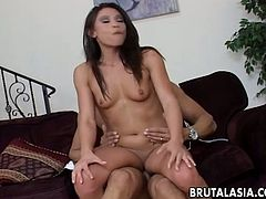 Sizzling porn star Jayna Oso rides solid prick in reverse cowgirl position
