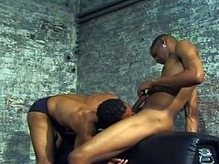 These two hot black gay men like to fuck, when they can. But until this day, Ricco had no idea, Richie liked him so much. He kisses Ricco hard and takes his dick in his mouth, preparing it for some very hard pounding.