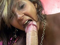 This hot tranny and the guy's sexy wife can't wait to pull his pants off and go to town on his massive cock. His wife sits on his face and makes him eat out her pussy, while he is getting his dong sucked by a tranny with a cock as big as his!