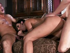 Dylan Ryder enjoys cock sucking too much to stop in oral action