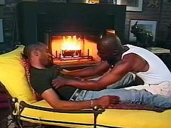 Is there anything more romantic than a nice evening by the fire with the one you love. These hunky black dudes would certainly agree with that sentiment. Soon, they are tearing off each other's clothes, to reveal pulsating muscles. They suck cock so well.