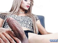 Sexy Blonde Shemale Jerking Her Big Dick on Cam