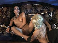 Briana Blair and Kaylani Lei have a great time eating each others fuck hole