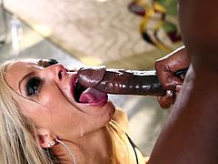 Look at how this blonde goddess works on a massive black dong. She deepthroats it and plays with the shaft. She even makes sure to suck on her black boyfriend's huge nuts. She wants his sticky cum all over her pretty face.