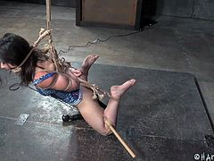 Amy is the latest submissive under the care of Jack, her executor. Her arms are bound tightly behind her back and the bottom half of her legs, are pulled up, and secured to a wooden rod across the back of her knees. A dildo on a stick is stuck inside her and secured to keep it from coming out of her.
