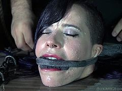 After finishing off Freya, her head secured in her devices, the executor moves to Violet, who is on her knees and trying not to move. Her nipples and her pussy lips both have clamps attached to them, so moving will hurt. I guess that's why he breaks out the vibrator and puts it right on her clit.