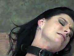 Sleaze black haired has rammed From backside inside the sadism