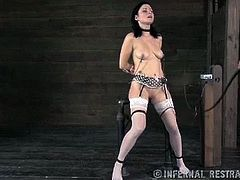 Kinky master punishes tied up brunette in sexy white stockings