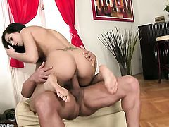 Brunette Jessica Koks is never enough and takes guys stiff sausage in her mouth again