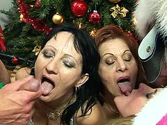 Mat.nl - Laurine, Marita and Ilonka christmas group sex