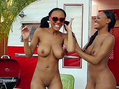 Visit official Playboy's HomepageLook alike ebony hotties are posing nude and providing steamy softcore scenes in sensual manners during their hot and kinky lesbian show
