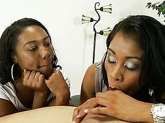 Yasmine de Leon and horny dude have a lot of fun in this oral action