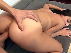 Flexible small tits babe is crazy hot getting fucked