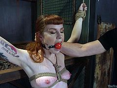Barbary is the perfect slave. She does exactly what her master wants her to do and she never complains. The ginger babe chokes on his dick and she is tightly bound in bondage. The rope doesn't deter her from getting a mouthful of dick.