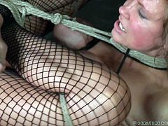 Although most are uncomfortable at some point with bondage, Rain here feels right at home being tied, choked and tightly restrained from movement, so she's at the mercy of her executor or in this case, mistress.