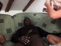 Mia Leone is extremely horny in this interracial hardcore scene featuring her getting banged