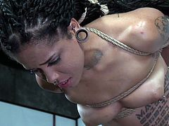 Black master Jack Hammerx, is working really hard to create this complicated and strong rope bondage for Jessica Creepshow. Ebony tattooed babe is tightly bound in the middle of the room, under the ceiling and suspended. Have fun and enjoy exciting BDSM action!