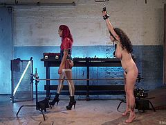 Arabelle always needs more: more money, more attention, more sex. And today, her angry ebony lover, Daisy Ducati, will