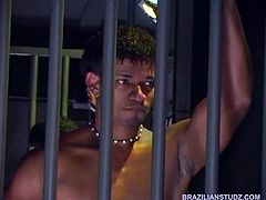 This scene opens with Latino Emmilio Calvo dancing and stripping in a dark strip club cage. His writhing and selfpleasure is too much for Felipe Sainz to handle. Soon, the erotic dancer approaches him and the big cock sucking begins. Diego Lozana watches from a few meters away until he finally decides to join the dark, Brazilian beauties for a Latin threesome.