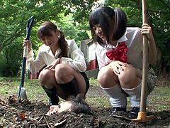 Japanese teacher and schoolgirl in classic pigtails and uniform take a walk outside and discover the very masochistic principal buried to his head before unleashing liquid fury on him with subtitles