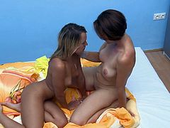 Awesome Hungarian girls work on their pussy licking skills