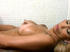 This elegant blonde tranny has a body to admire with sexy curves, perfect tits and a plump little shecock that is always ready for some jerking. Suzy Valenca teases the camera in her red lingerie...